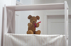 ours en peluche (pour chiche)