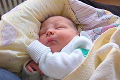 dormanta bebo