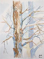 2013-01-15 La-neige-dans-les-bois-á-Sexten web
