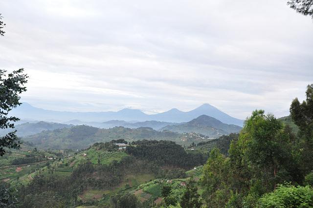 Fore jam videblas la vulkanoj de la Virunga Montaro