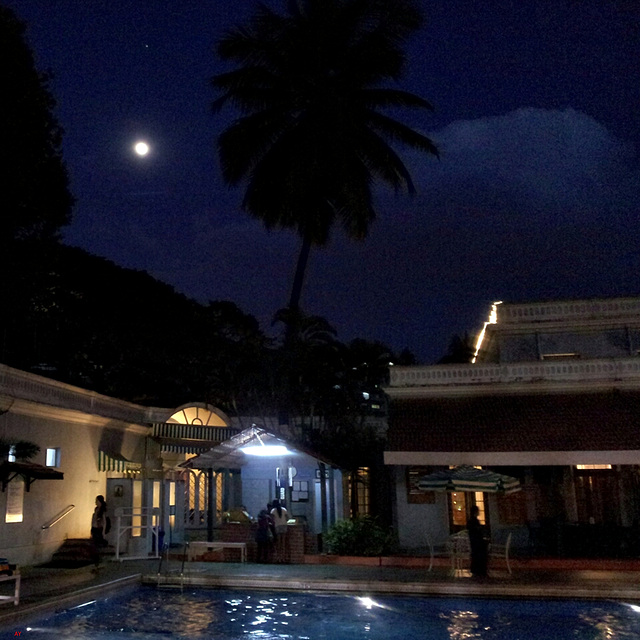 Moon and pool