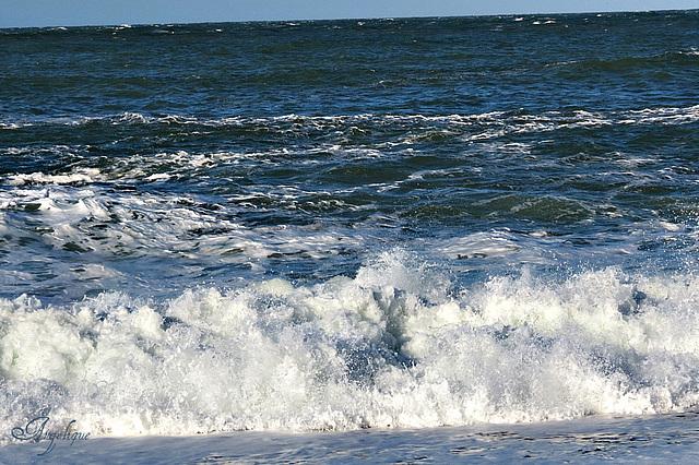 25 novembre 2012 ( Etretat) 442