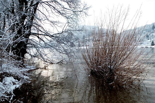 Elbe bei Pirna/Oberposta am 6.2.2013