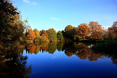 Herbstliche Umrandung