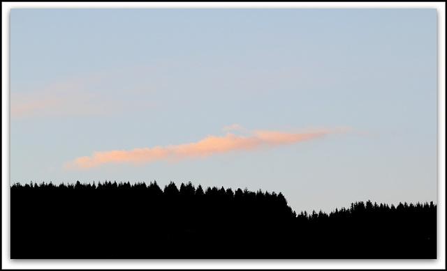 le nuage rose