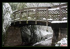 Le pont vert