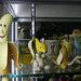 International Banana Museum (8503)