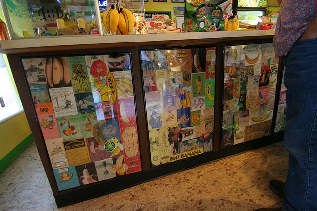 International Banana Museum (8515)