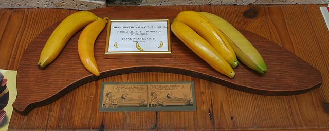 International Banana Museum (8533)