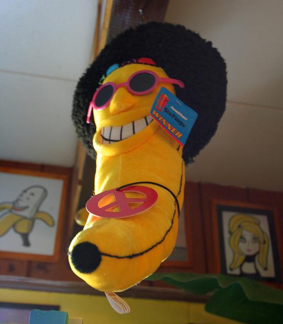 International Banana Museum (8534)
