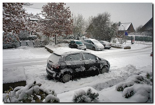 Schnee Dezember 2012