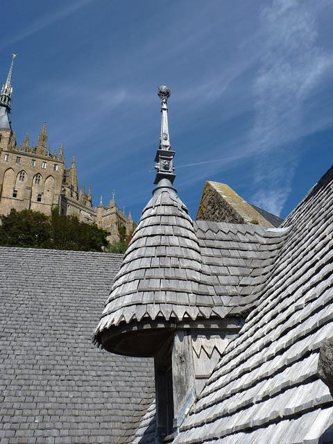 Les toitures recouvertes d'écailles de bois