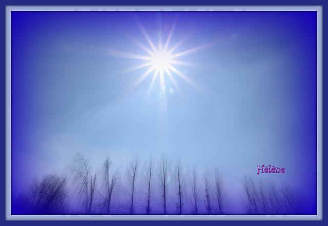 des rayons de soleil pour votre journée !!!!