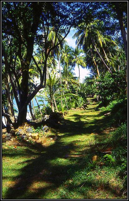 les iles du Salut (Guyane)