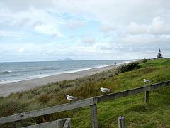 Matata Beach