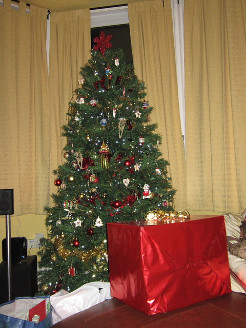 Their lovely Christmas tree