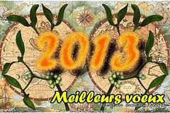 tous mes voeux pour 2013......