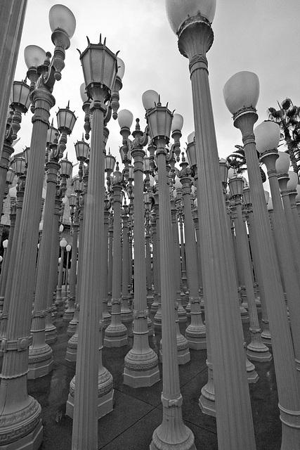 Urban Light by Chris Burden at LACMA (8201)