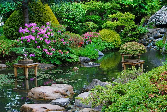 Jardin zen d'Albert Kahn