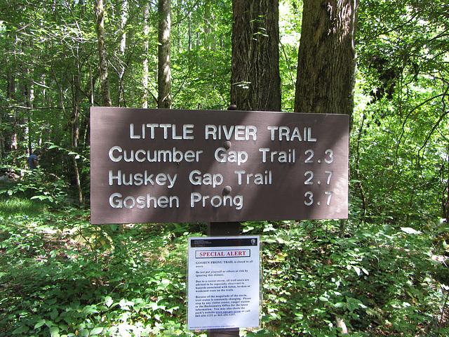 ein kurzer Trail