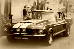 Shelby Mustang GT 500