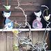 Hauskatzen, die keine Vögel fangen