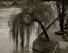 Urban solitude - Paris