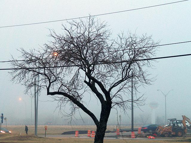 Fog and Love