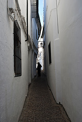 Villa de Priego (Córdoba)