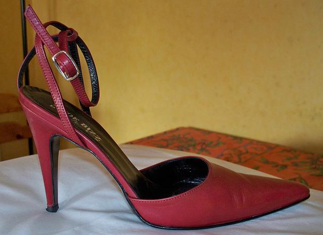 My friend Lula's divine  high heel shoe / Escarpin divin de mon amie Lula.