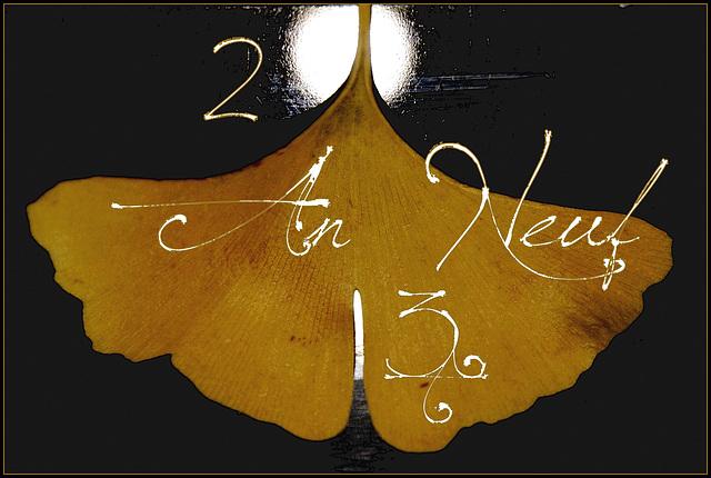 2013 An neuf