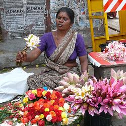 naître femme : la femme-fleur : l'Inde