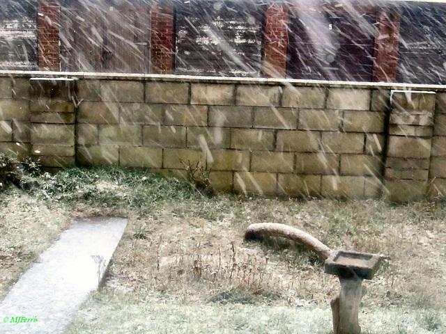 02 snow