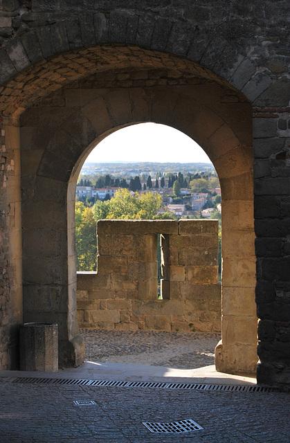 Carcassonne au loin ..la ville