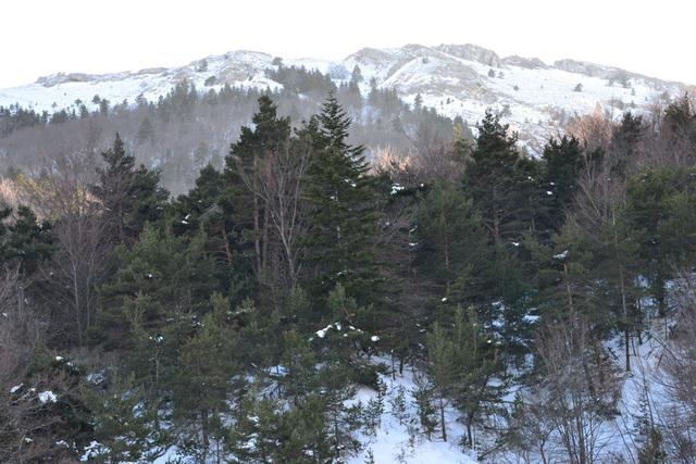 Montagnes drômoises