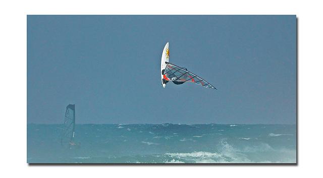 Le surf.