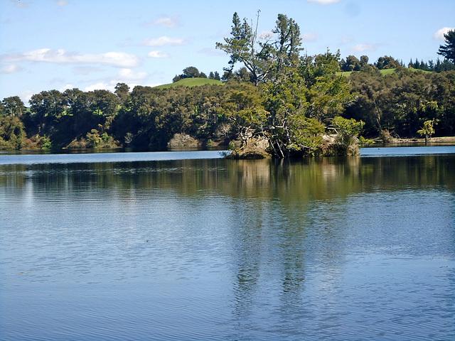 Island at Jones Landing