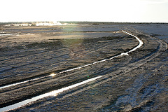At The New Mud Volcanoes (8449)