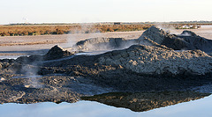 At The New Mud Volcanoes (8450)