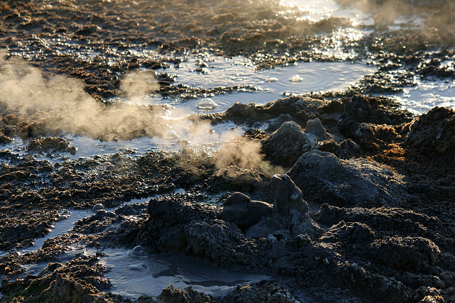 At The New Mud Volcanoes (8463)