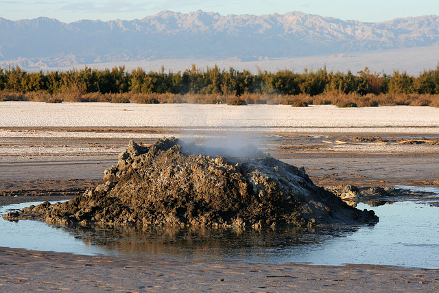 At The New Mud Volcanoes (8467)