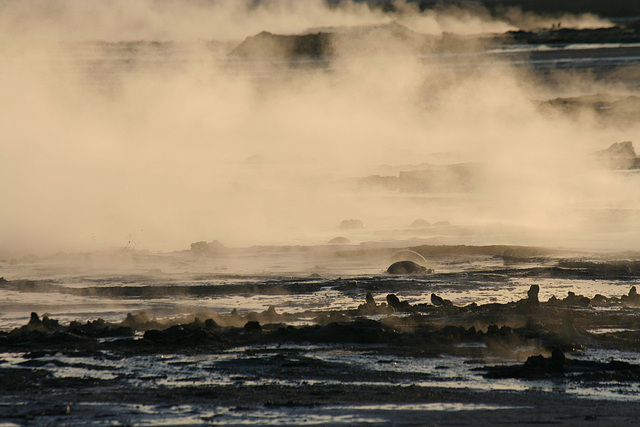 At The New Mud Volcanoes (8471)