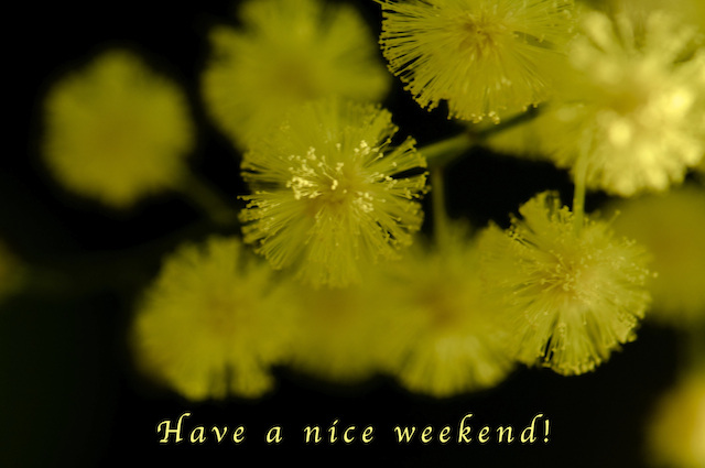 To all my friends!