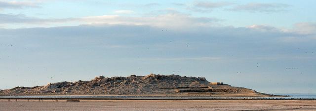 Mullet Island (8440)