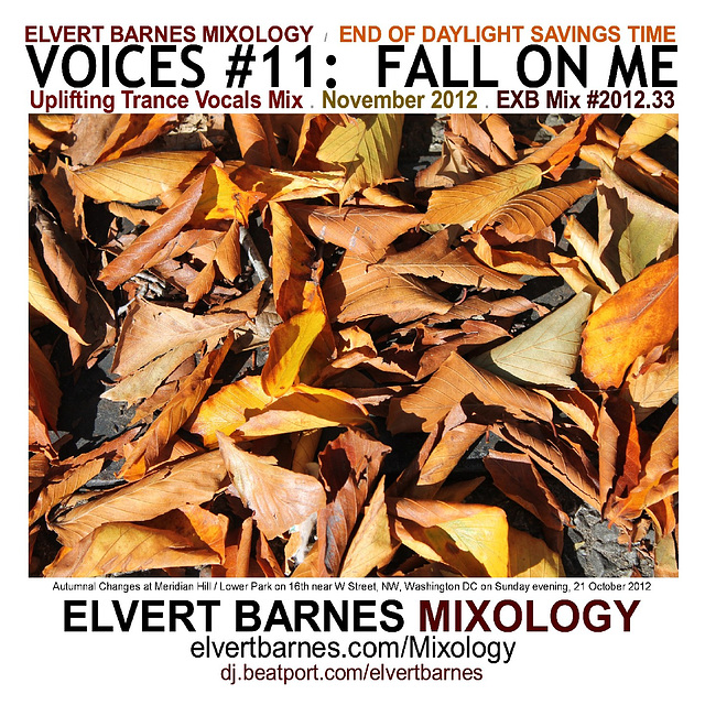 CDCover.Voices11.FallOnMe.Trance.EndDST.November2012