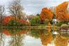La féerie de l'automne