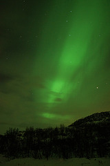 Northern Light column