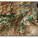 Grenats demantoïdes de Madagascar (2)