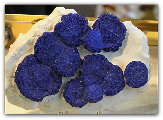 Azurite australienne, sur kaolin