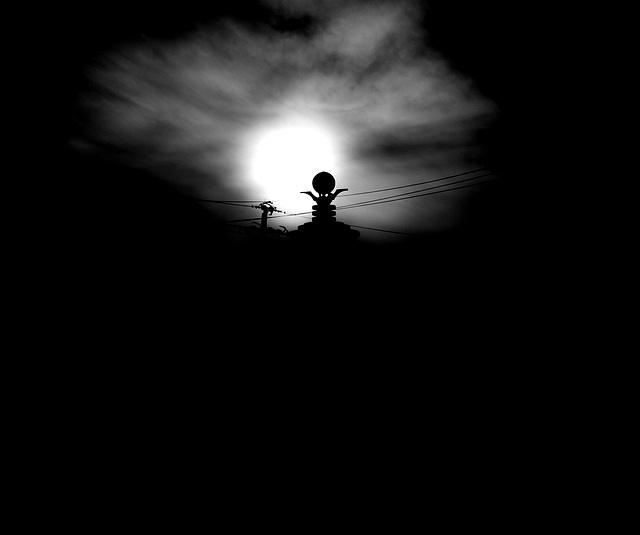 The Night Belongs To Mona ╕